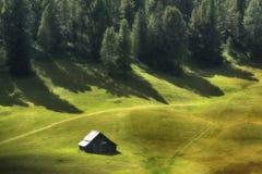 在绿色草甸的小屋有杉木森林的在背景中 库存图片