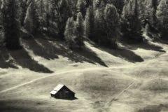 在绿色草甸的小屋有杉木森林的在背景中 库存照片