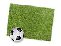 在绿色草皮补丁的橄榄球或足球  库存图片