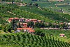 在绿色葡萄园中的小村庄 免版税图库摄影