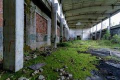 在绿色青苔盖的被放弃的工厂 库存照片