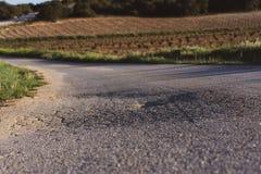 在绿色领域中的破旧的柏油路在春天 ?? 库存照片