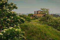 在绿色领域和树中的城市之外掩藏的房子 免版税库存图片
