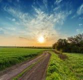 在绿色领域和橙色日落的农村路 免版税库存图片