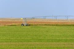 在绿色领域的灌溉系统 库存照片
