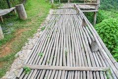 在绿色领域的竹木走道在乡区 库存照片