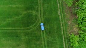 在绿色领域earial视图移动上面的蓝色汽车 股票录像