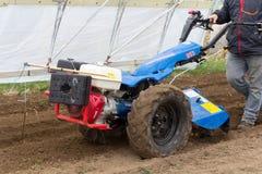 在绿色hous里面的BCS 853普遍的拖拉机单位运作的土壤土 库存图片