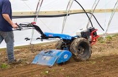 在绿色hous里面的BCS 853普遍的拖拉机单位运作的土壤土 免版税库存图片