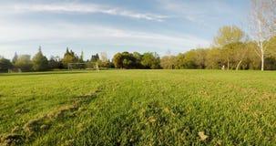 在绿草上的寄生虫视图与蓝天白色云彩 股票视频