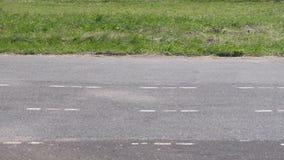 在绿草特写镜头背景的体育场涂柏油轨道  股票录像