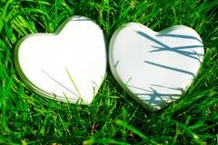 在绿草的两白色光滑的瓷心脏;夏天 喜帖;爱笔记 库存照片