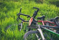 在绿草的两辆体育自行车谎言 库存照片