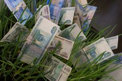 在绿草的俄罗斯卢布钞票 发单美元草绿色生长增长一百货币一 财务的概念 库存照片