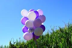 在绿草的多彩多姿的欢乐气球反对天空蔚蓝 免版税图库摄影