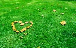 在绿草的心脏 E 免版税库存图片