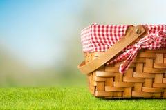 在绿草的野餐篮子 ?? 库存图片