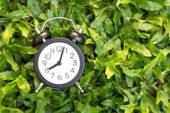 在绿草背景、时间概念或者开始的黑闹钟  免版税库存照片