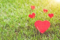 在绿草背景的红色心脏与拷贝空间 库存照片