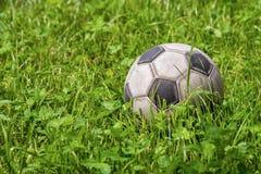 在绿草-橄榄球体育的皮革足球 库存图片