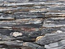 在缅因海滩的岩层 免版税图库摄影