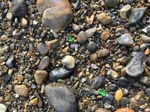 在缅因的海岸的五颜六色的海玻璃 免版税库存图片