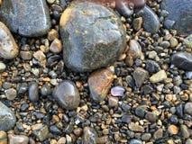 在缅因的海岸的浅紫色/淡紫色海玻璃 库存照片