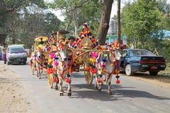 在缅甸的Novitiation仪式 免版税库存图片
