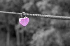 在缆绳的关键锁桃红色 图库摄影