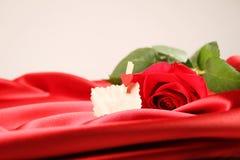 在缎背景的红色玫瑰 库存照片
