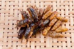 在编篮艺品背景的酥脆油煎的昆虫 库存图片
