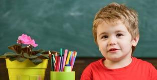 在罐和铅笔,在背景,关闭的黑板的花附近哄骗男孩在教室,拷贝空间 逗人喜爱的小孩和 免版税库存图片