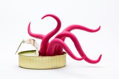 在罐头的外籍人章鱼 免版税库存照片