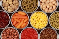 在罐头的蔬菜 库存照片