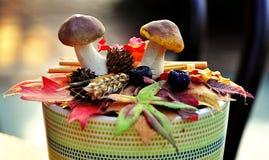 在罐的两个蘑菇 免版税库存照片