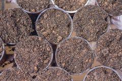 在罐的土壤 免版税库存图片