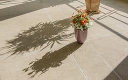 在罐的在粗砺棕色的地板上的人造花和阴影 免版税库存照片