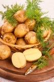 在罐的开胃土豆 免版税库存照片
