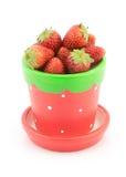 在罐的新鲜的草莓在白色背景 免版税库存图片