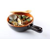 在罐的新鲜的蛤蜊 免版税库存图片
