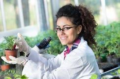 在罐的生物学家倾吐的化学制品用新芽 免版税图库摄影