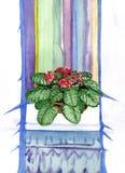 在罐的红色紫罗兰色花在窗台 免版税库存图片