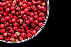 在罐的红辣椒种子有拷贝空间的 免版税图库摄影