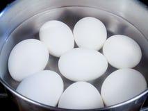 在罐的水煮蛋 免版税库存照片