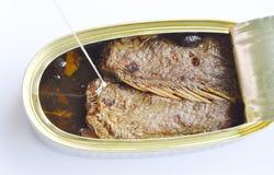 在罐装的锡的咸油煎的鱼在白色背景打开了 免版税库存图片