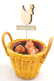 在罐whis标题种植的郁金香电灯泡 免版税库存图片