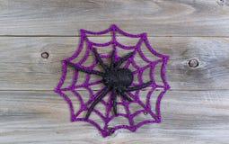 在网的万圣夜蜘蛛 免版税库存照片