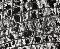 在网的老金属格栅 库存图片