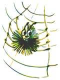 在网的蜘蛛 免版税库存图片