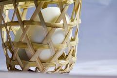 在网的鸡蛋 图库摄影